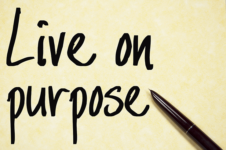 What is so Important about Purpose at Work?